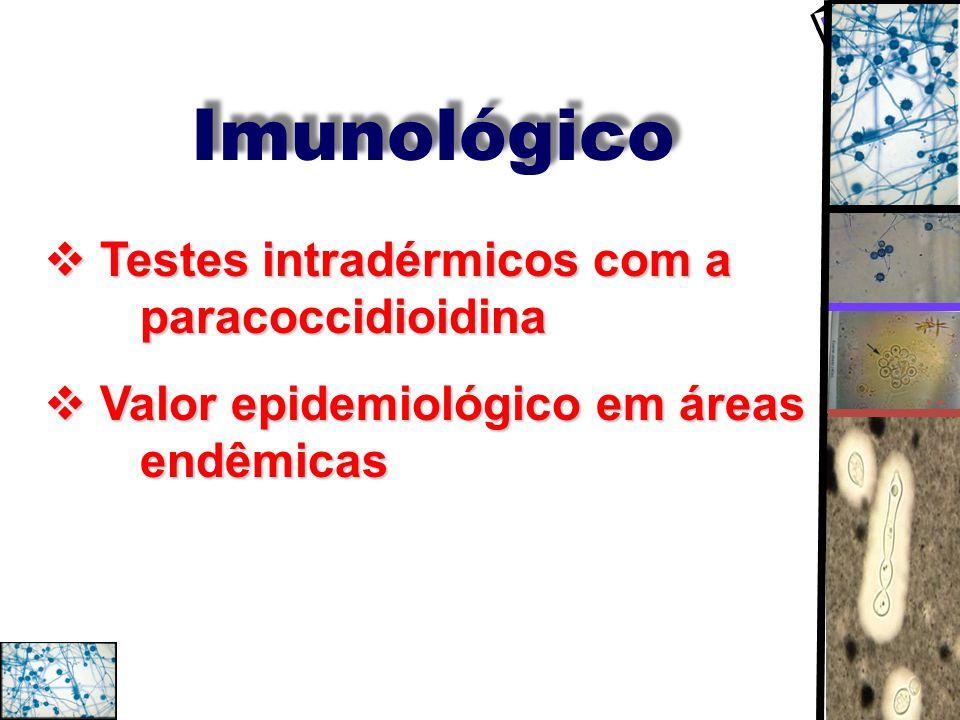 Imunológico Testes intradérmicos com a paracoccidioidina Testes intradérmicos com a paracoccidioidina Valor epidemiológico em áreas endêmicas Valor ep