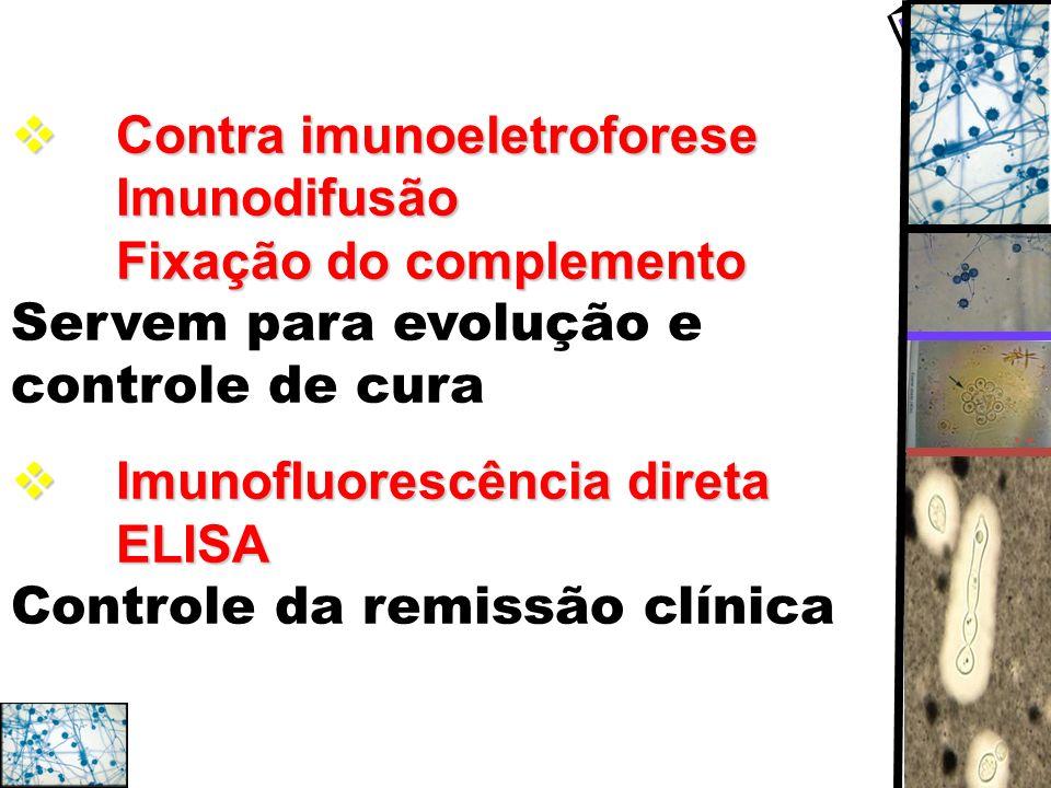 Contra imunoeletroforese Imunodifusão Fixação do complemento Contra imunoeletroforese Imunodifusão Fixação do complemento Servem para evolução e contr
