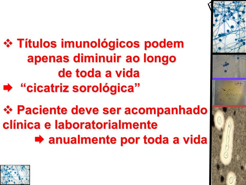 Títulos imunológicos podem apenas diminuirao longo de toda a vida cicatriz sorológica Títulos imunológicos podem apenas diminuirao longo de toda a vid