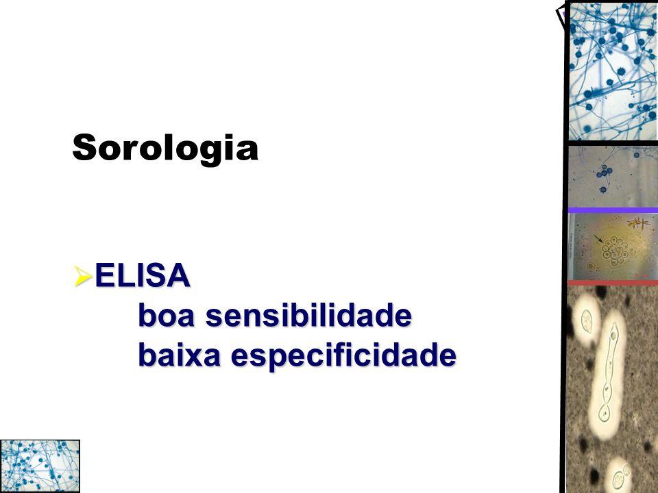 Sorologia ELISA boa sensibilidade baixa especificidade ELISA boa sensibilidade baixa especificidade