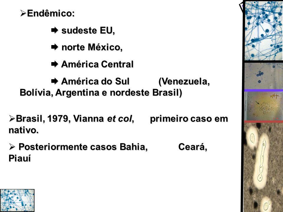 Endêmico: Endêmico: sudeste EU, sudeste EU, norte México, norte México, América Central América Central América do Sul (Venezuela, Bolívia, Argentina