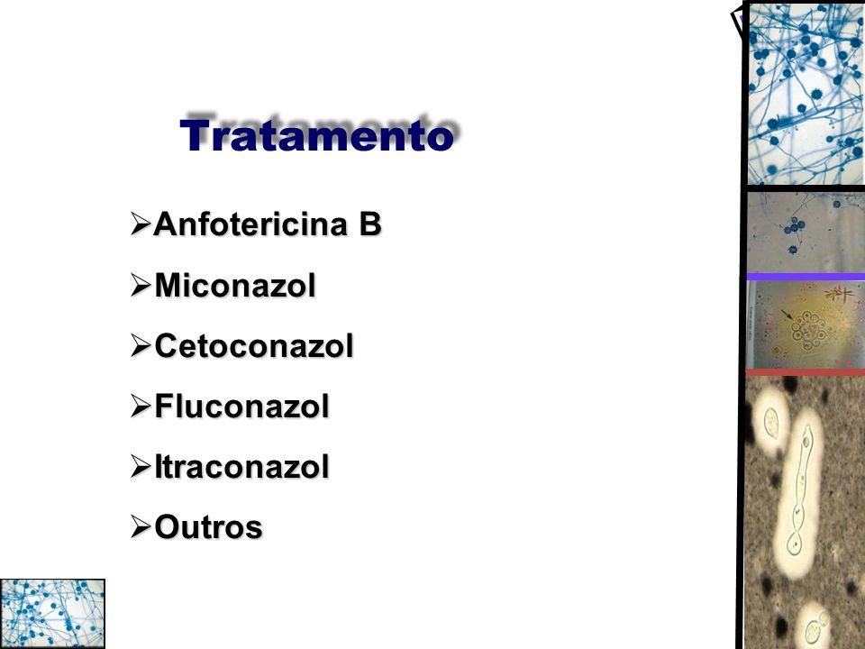 Tratamento Anfotericina B Anfotericina B Miconazol Miconazol Cetoconazol Cetoconazol Fluconazol Fluconazol Itraconazol Itraconazol Outros Outros