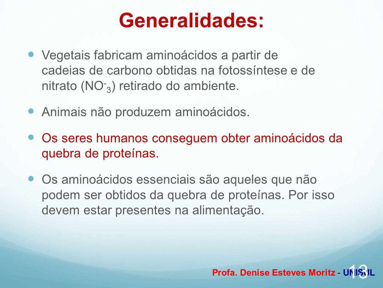 Profa. Denise Esteves Moritz - UNISUL Generalidades: Vegetais fabricam aminoácidos a partir de cadeias de carbono obtidas na fotossíntese e de nitrato