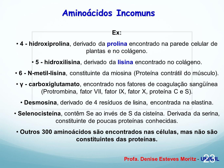 Profa. Denise Esteves Moritz - UNISUL Aminoácidos Incomuns Ex: 4 - hidroxiprolina, derivado da prolina encontrado na parede celular de plantas e no co