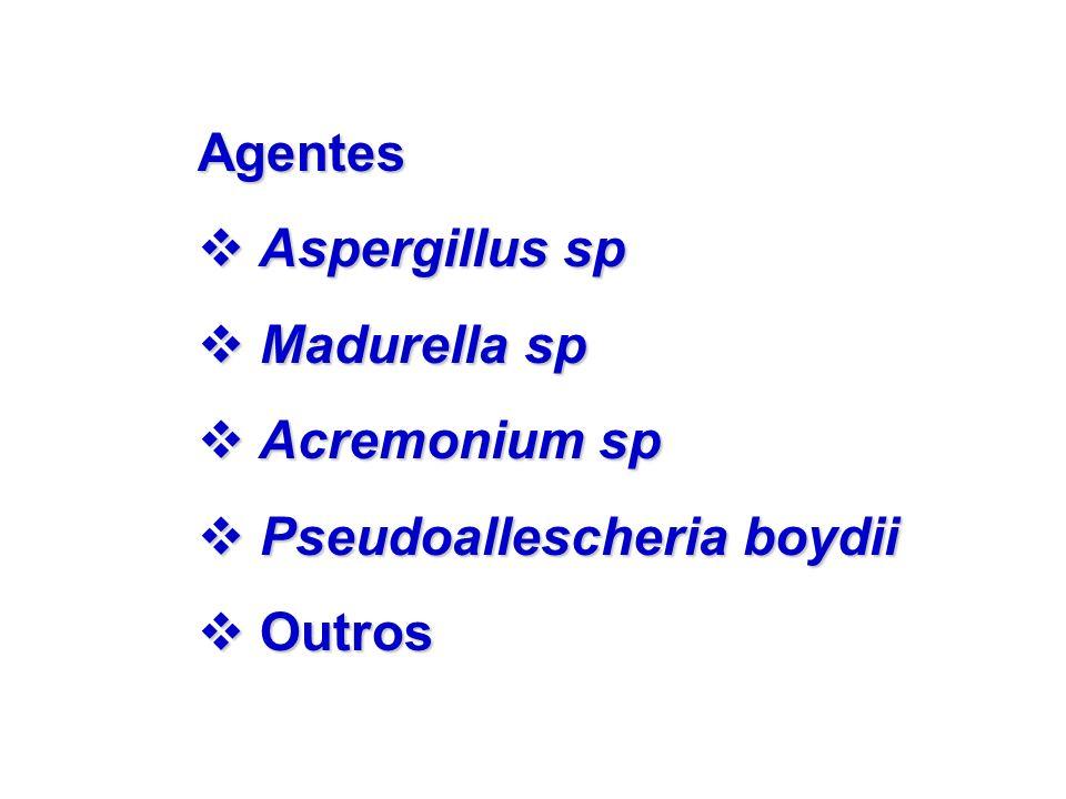Agentes v Aspergillus sp v Madurella sp v Acremonium sp v Pseudoallescheria boydii v Outros
