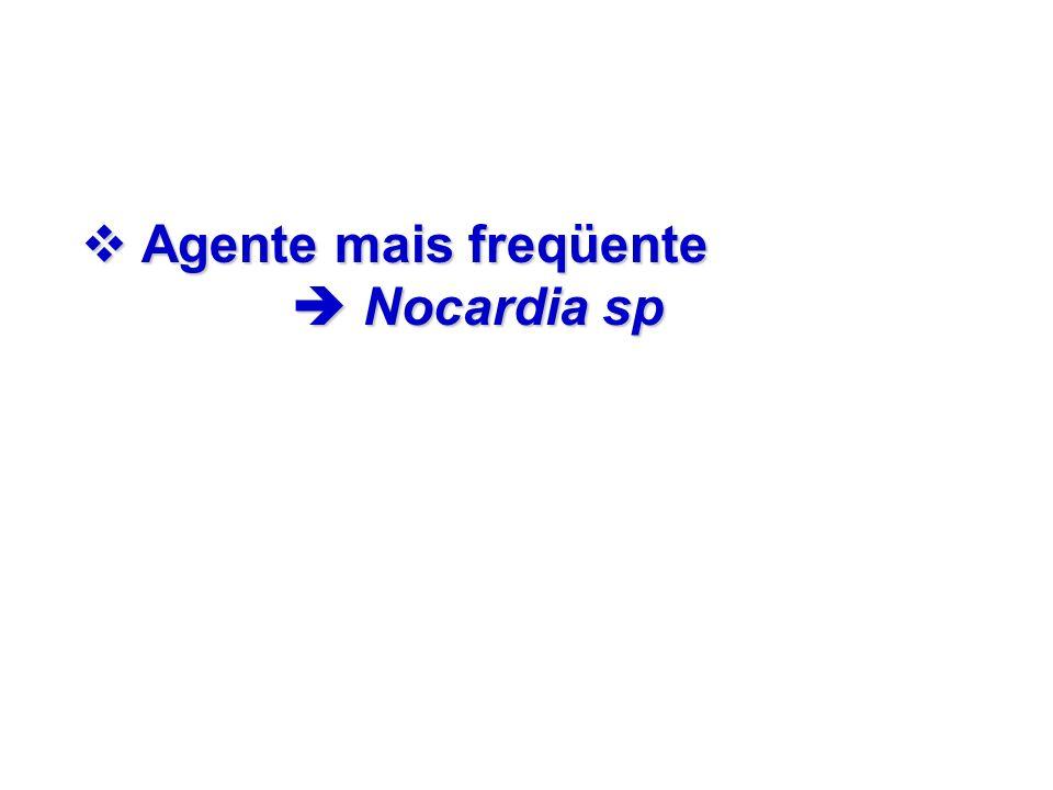 Agente mais freqüente Nocardia sp Agente mais freqüente Nocardia sp