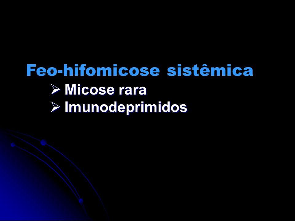 Feo-hifomicose sistêmica Micose rara Micose rara Imunodeprimidos Imunodeprimidos