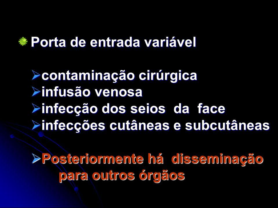 Porta de entrada variável contaminação cirúrgica contaminação cirúrgica infusão venosa infusão venosa infecção dos seios da face infecção dos seios da