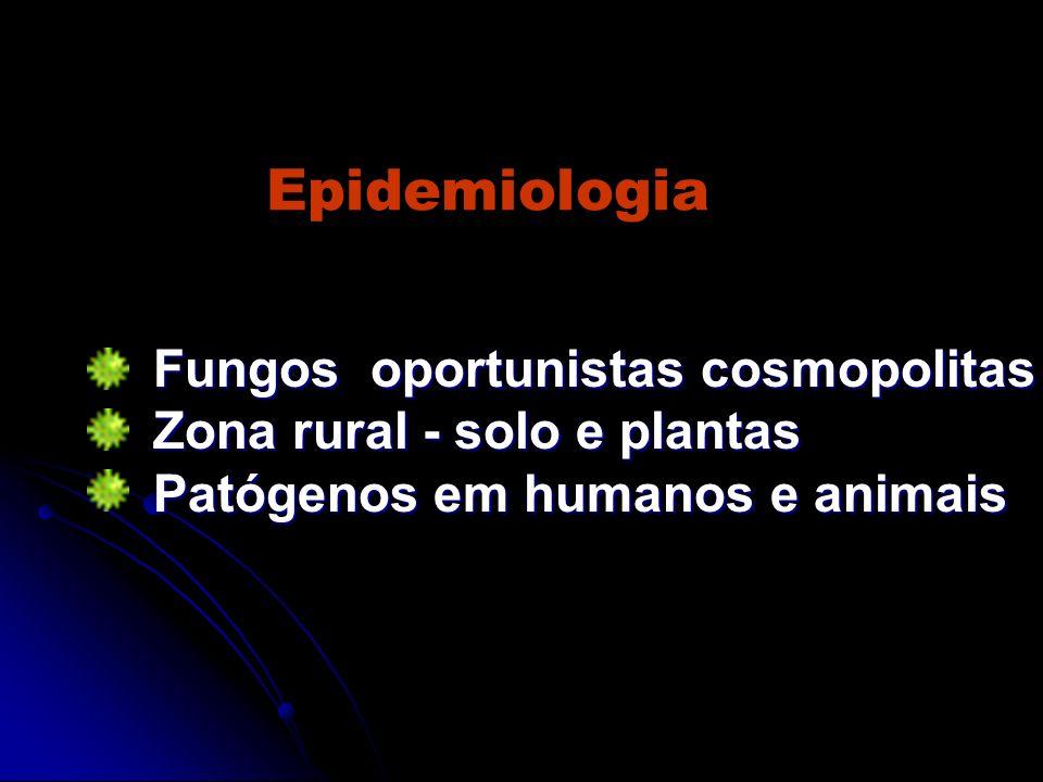 Epidemiologia Fungos oportunistas cosmopolitas Fungos oportunistas cosmopolitas Zona rural - solo e plantas Zona rural - solo e plantas Patógenos em h
