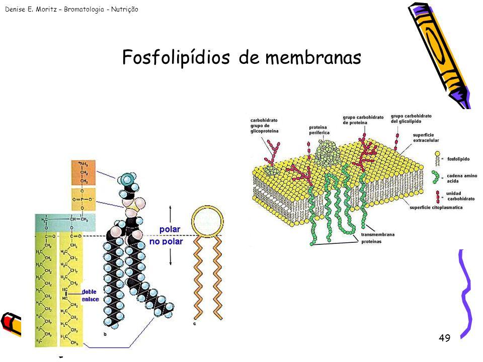 Denise E. Moritz – Bromatologia - Nutrição 49 Fosfolipídios de membranas