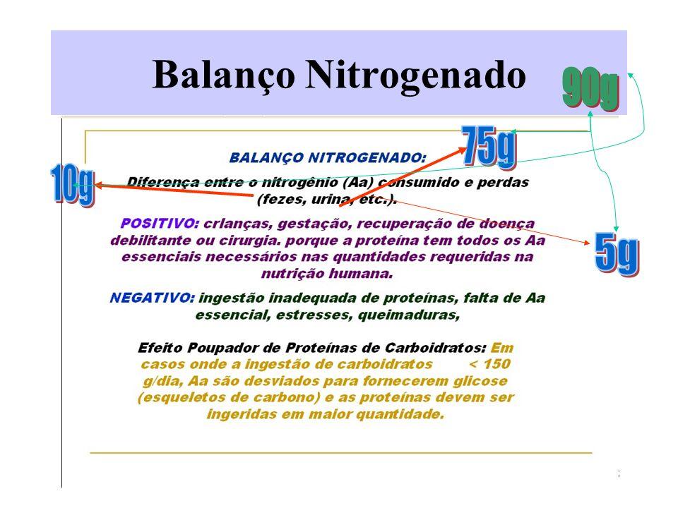 5 Balanço Nitrogenado