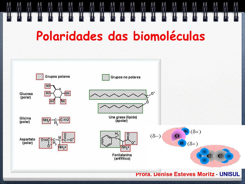 Profa. Denise Esteves Moritz - UNISUL Polaridades das biomoléculas