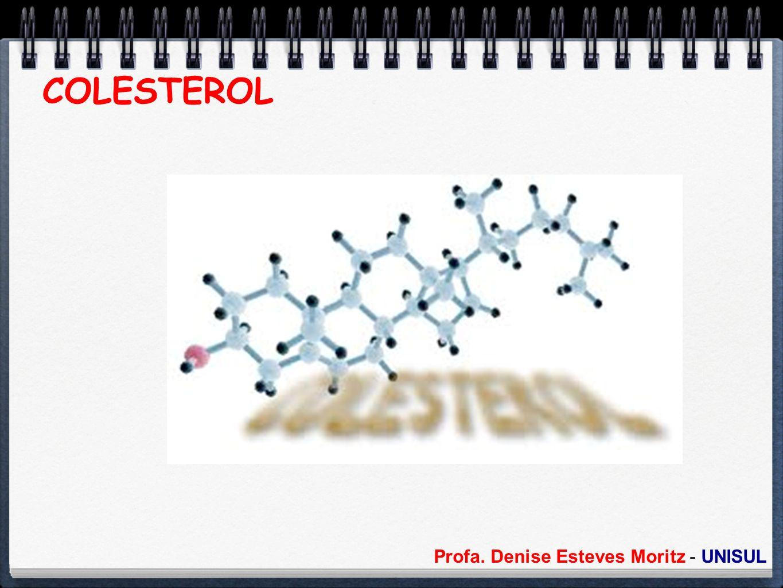 Profa. Denise Esteves Moritz - UNISUL COLESTEROL