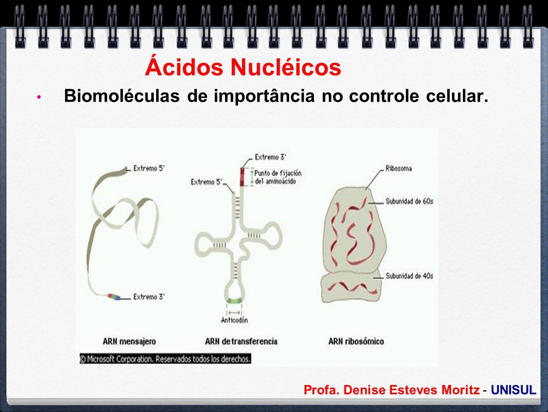 Ácidos Nucléicos Biomoléculas de importância no controle celular.