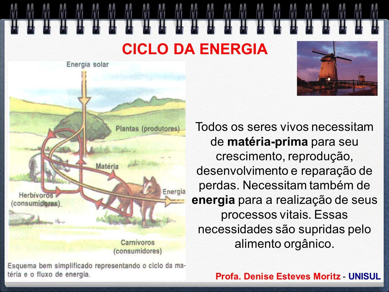 Profa. Denise Esteves Moritz - UNISUL CICLO DA ENERGIA Todos os seres vivos necessitam de matéria-prima para seu crescimento, reprodução, desenvolvime