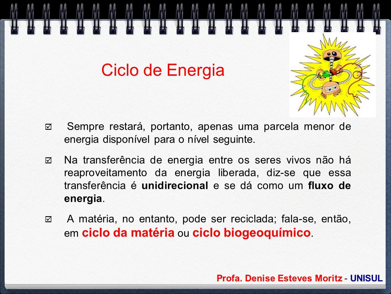 Profa. Denise Esteves Moritz - UNISUL Ciclo de Energia Sempre restará, portanto, apenas uma parcela menor de energia disponível para o nível seguinte.