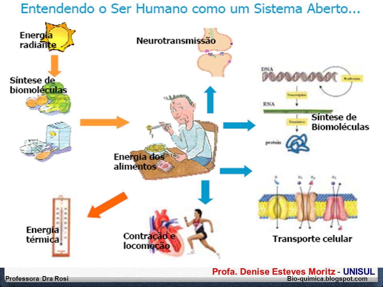 Profa. Denise Esteves Moritz - UNISUL Professora Dra Rosi Bio-quimica.blogspot.com