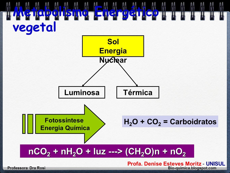 Profa. Denise Esteves Moritz - UNISUL Metabolismo Energético vegetal Sol Energia Nuclear LuminosaTérmica Fotossíntese Energia Química H 2 O + CO 2 = C