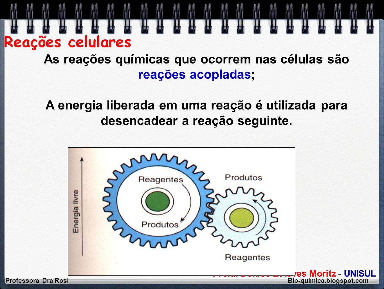 Profa. Denise Esteves Moritz - UNISUL Reações celulares Professora Dra Rosi Bio-quimica.blogspot.com As reações químicas que ocorrem nas células são r
