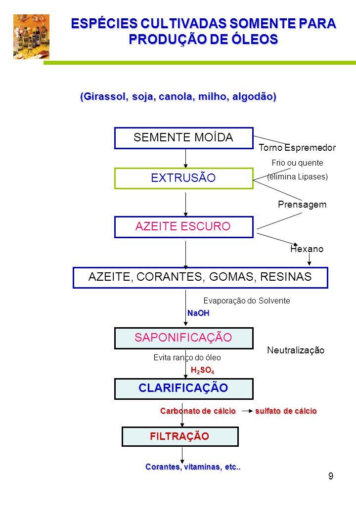 10 Azeite de Oliva FILTRAÇÃO OU CENTRIFUGAÇÃO DESODORIZAÇÃO DESMARGARINIZAÇÃO Resfriamento – separação Ác.