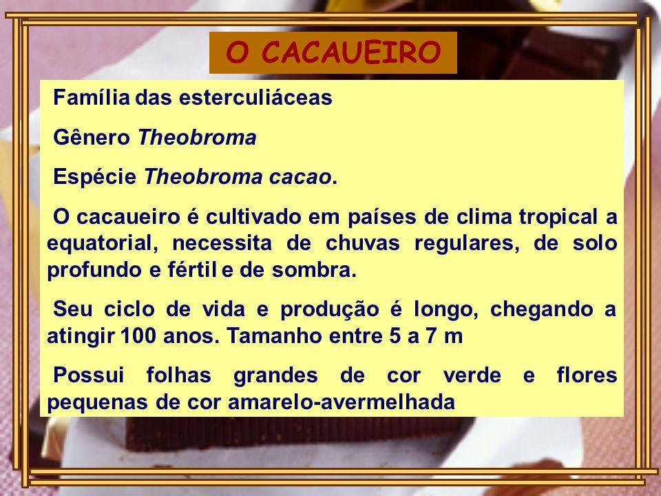 O CACAUEIRO Família das esterculiáceas Gênero Theobroma Espécie Theobroma cacao. O cacaueiro é cultivado em países de clima tropical a equatorial, nec