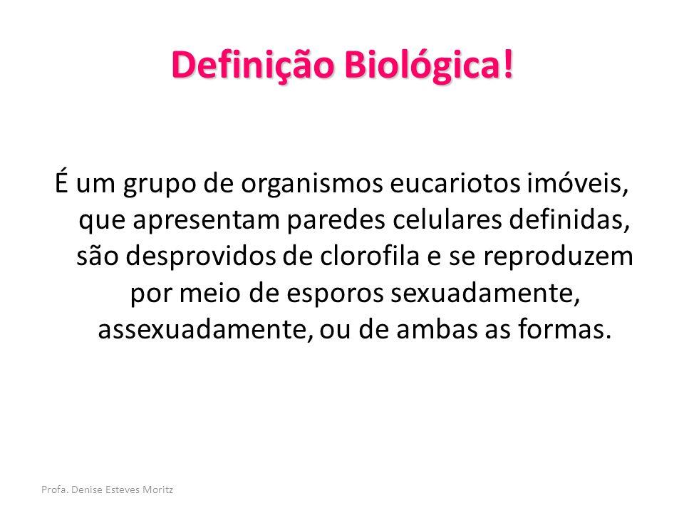 Profa. Denise Esteves Moritz Definição Biológica! É um grupo de organismos eucariotos imóveis, que apresentam paredes celulares definidas, são desprov