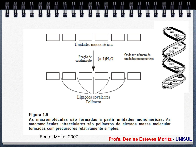 Profa. Denise Esteves Moritz - UNISUL Fonte: Motta, 2007