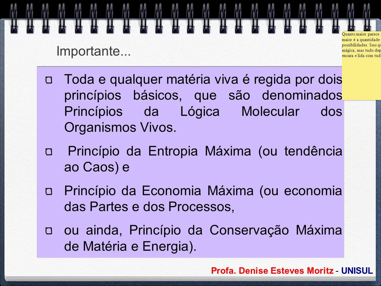 Profa. Denise Esteves Moritz - UNISUL Importante... Toda e qualquer matéria viva é regida por dois princípios básicos, que são denominados Princípios