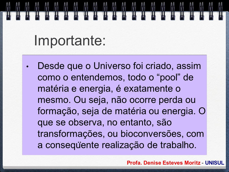 Profa. Denise Esteves Moritz - UNISUL Importante: Desde que o Universo foi criado, assim como o entendemos, todo o pool de matéria e energia, é exatam