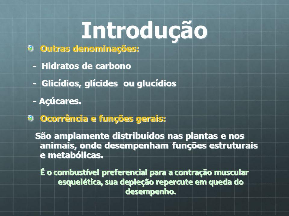 Introdução Outras denominações: - Hidratos de carbono - Hidratos de carbono - Glicídios, glícides ou glucídios - Glicídios, glícides ou glucídios - Aç