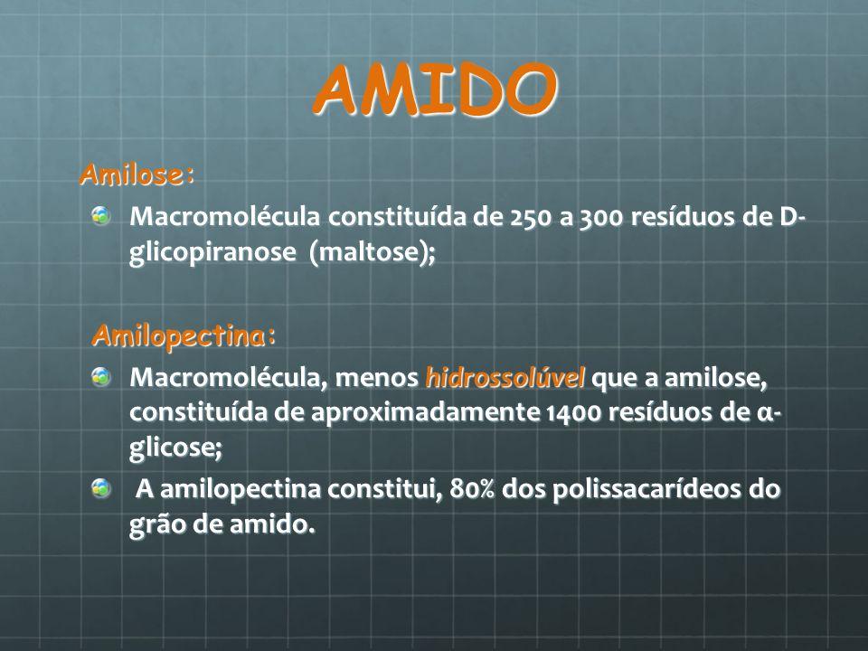 AMIDO Amilose: Amilose: Macromolécula constituída de 250 a 300 resíduos de D- glicopiranose (maltose); Amilopectina: Macromolécula, menos hidrossolúve