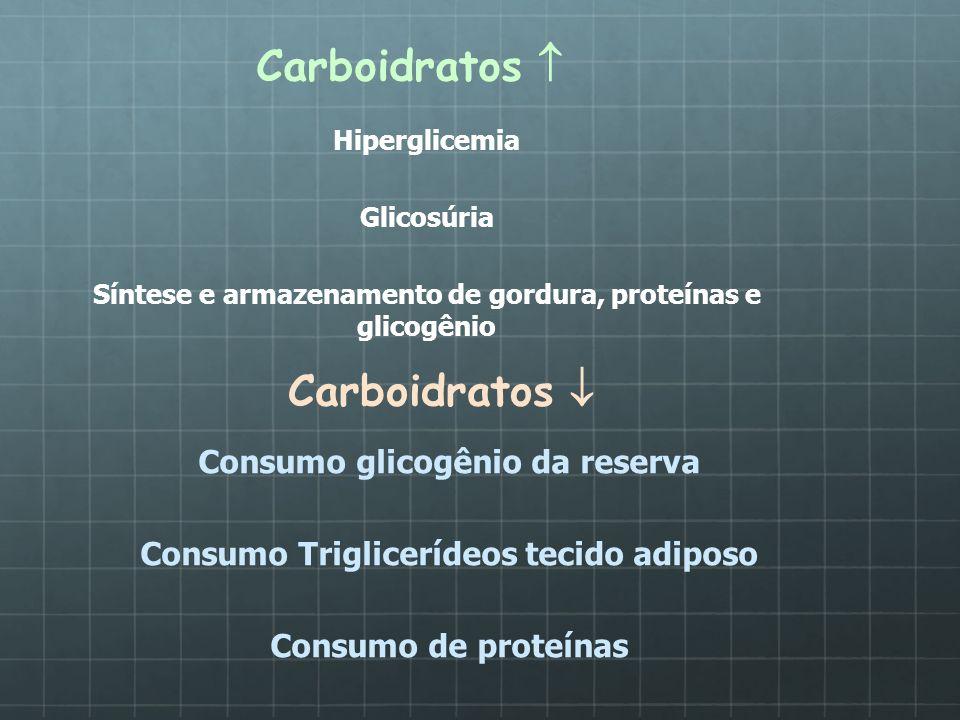 Carboidratos Hiperglicemia Glicosúria Síntese e armazenamento de gordura, proteínas e glicogênio Carboidratos Consumo glicogênio da reserva Consumo Tr