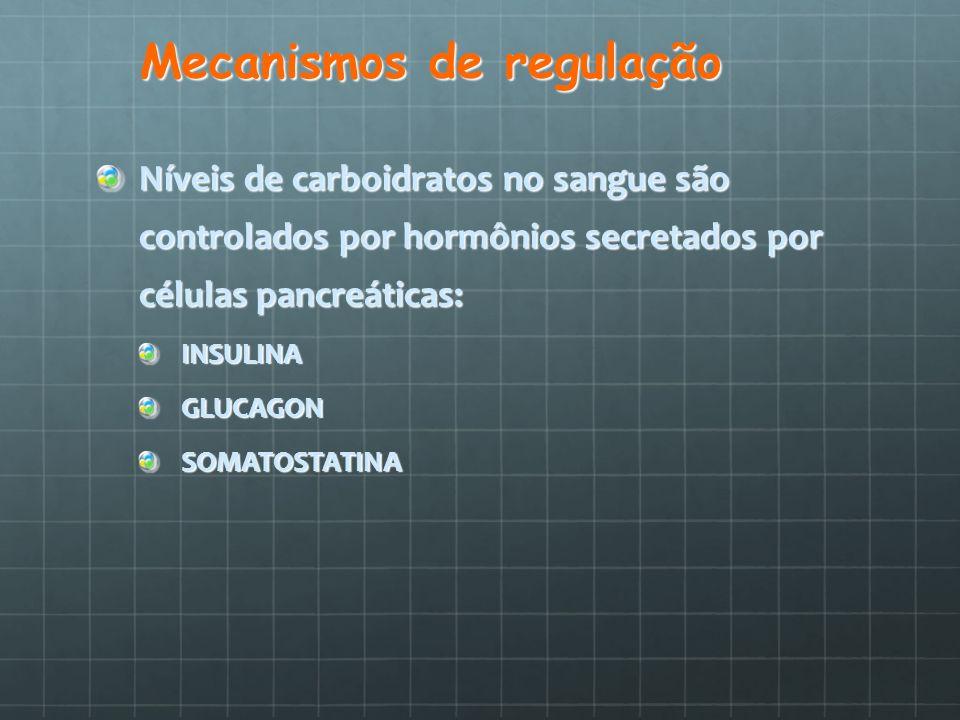 Mecanismos de regulação Níveis de carboidratos no sangue são controlados por hormônios secretados por células pancreáticas: INSULINAGLUCAGONSOMATOSTAT