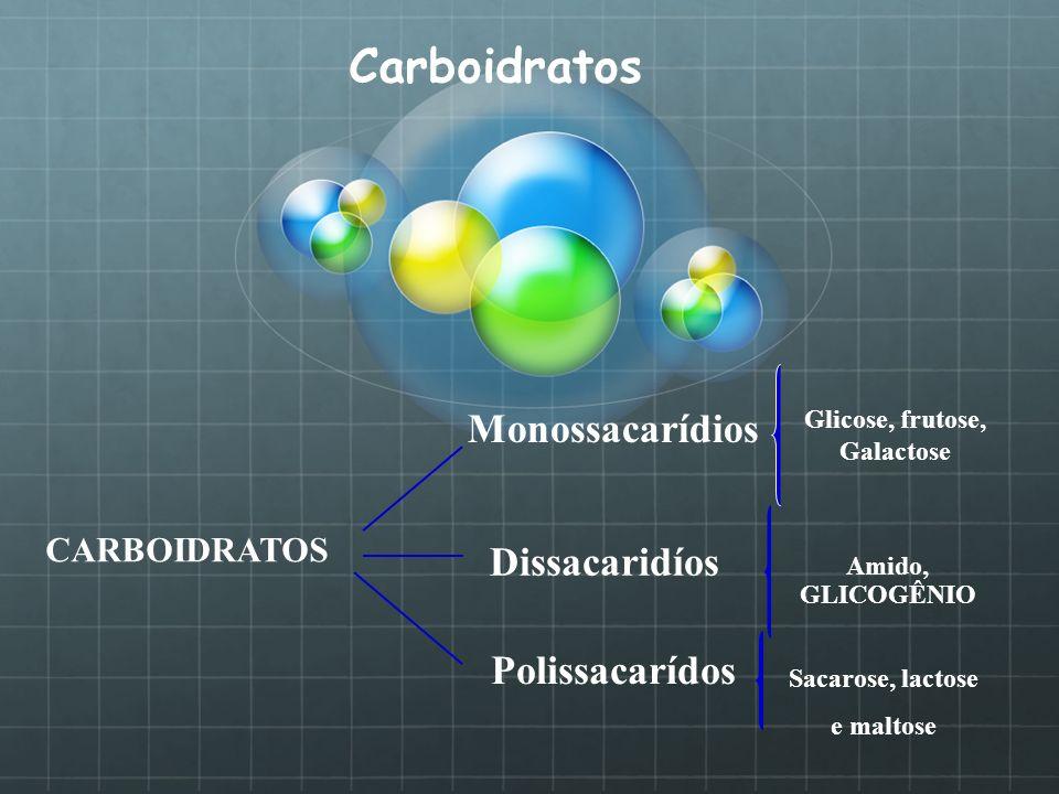 Carboidratos Amido, GLICOGÊNIO CARBOIDRATOS Monossacarídios Dissacaridíos Polissacarídos Glicose, frutose, Galactose Sacarose, lactose e maltose