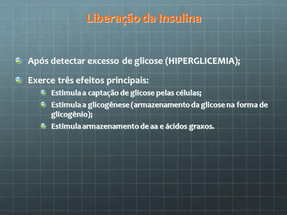 Liberação da Insulina Após detectar excesso de glicose (HIPERGLICEMIA); Exerce três efeitos principais: Estimula a captação de glicose pelas células;