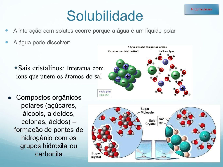 Profa. Denise Esteves Moritz - UNISUL Solubilidade A interação com solutos ocorre porque a água é um líquido polar A água pode dissolver: Sais cristal