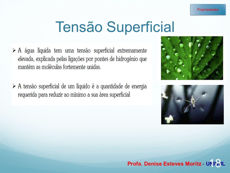 Profa. Denise Esteves Moritz - UNISUL Tensão Superficial 18 Propriedades