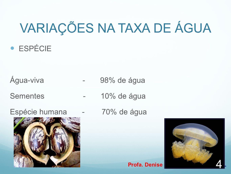 Profa. Denise Esteves Moritz - UNISUL VARIAÇÕES NA TAXA DE ÁGUA ESPÉCIE Água-viva - 98% de água Sementes - 10% de água Espécie humana - 70% de água 4