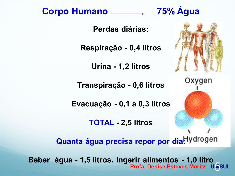 Profa. Denise Esteves Moritz - UNISUL Corpo Humano 75% Água Perdas diárias: Respiração - 0,4 litros Urina - 1,2 litros Transpiração - 0,6 litros Evacu