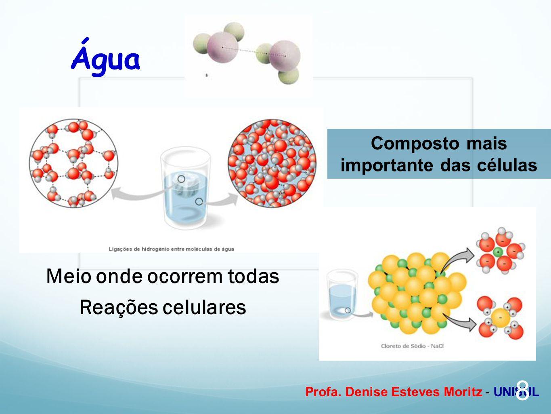 Profa. Denise Esteves Moritz - UNISUL Meio onde ocorrem todas Reações celulares Composto mais importante das células Água 8