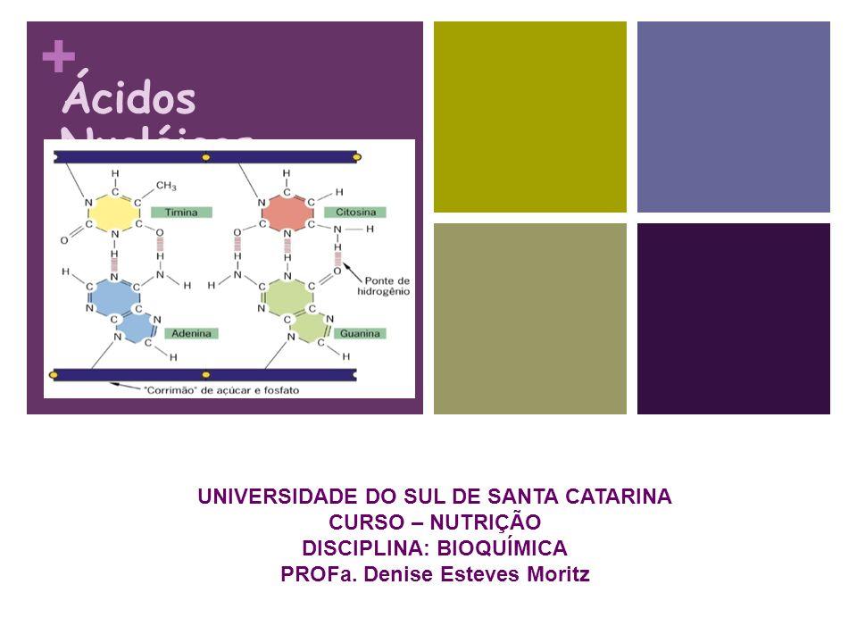 + Ácidos Nucléicos UNIVERSIDADE DO SUL DE SANTA CATARINA CURSO – NUTRIÇÃO DISCIPLINA: BIOQUÍMICA PROFa. Denise Esteves Moritz