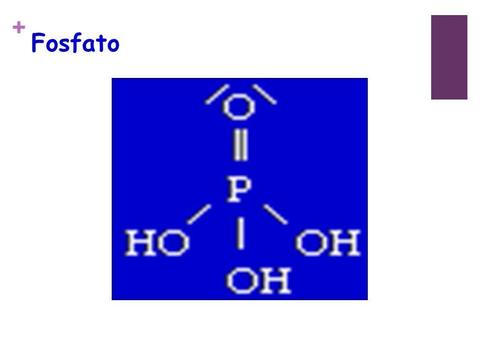 + Fosfato