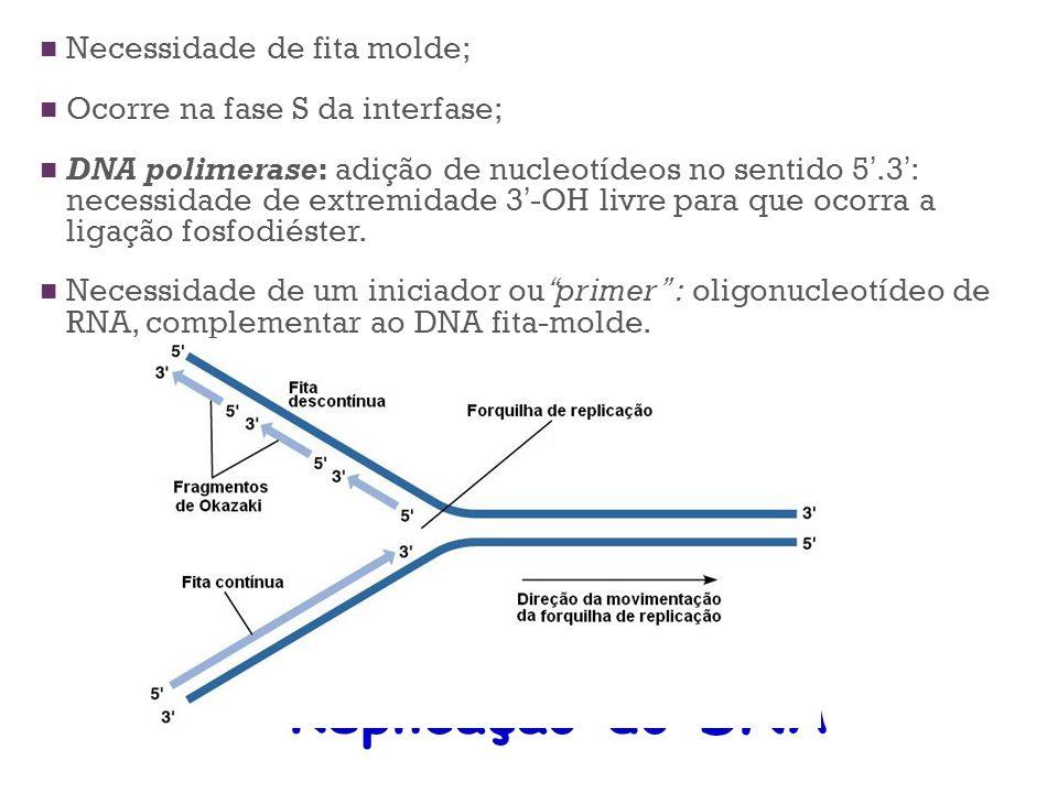 Replicação do DNA Necessidade de fita molde; Ocorre na fase S da interfase; DNA polimerase: adição de nucleotídeos no sentido 5.3 : necessidade de ext