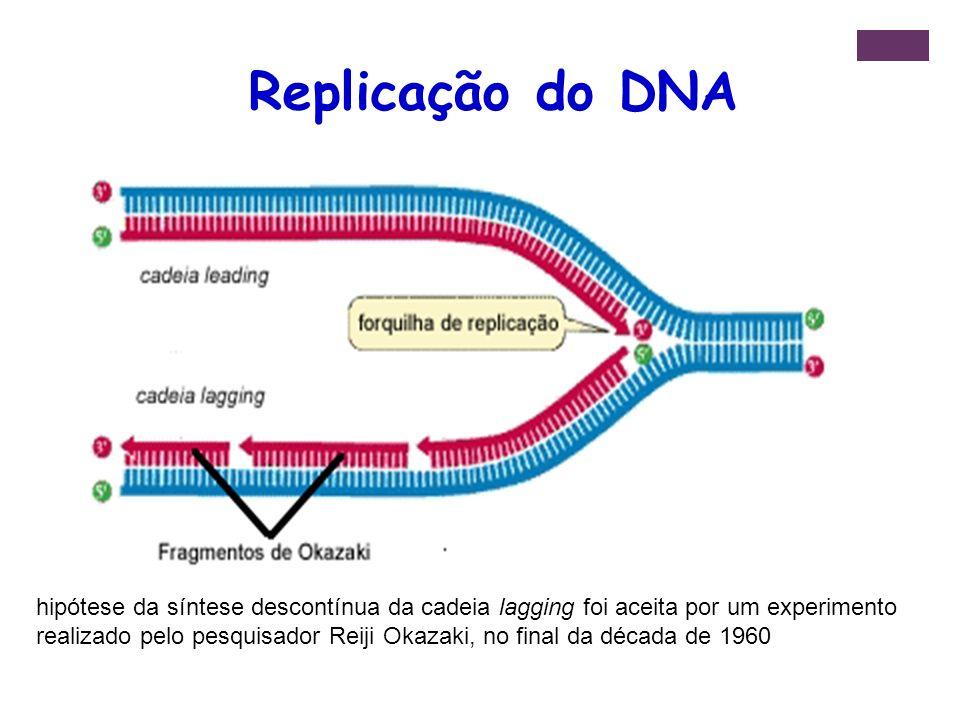 hipótese da síntese descontínua da cadeia lagging foi aceita por um experimento realizado pelo pesquisador Reiji Okazaki, no final da década de 1960 R