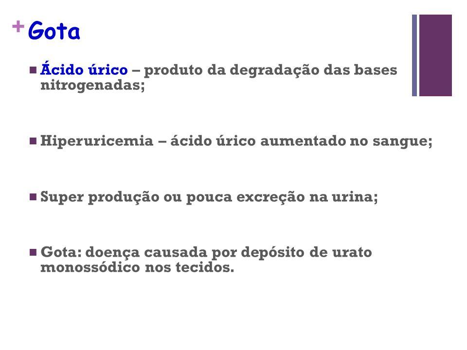+ Gota Ácido úrico – produto da degradação das bases nitrogenadas; Hiperuricemia – ácido úrico aumentado no sangue; Super produção ou pouca excreção n