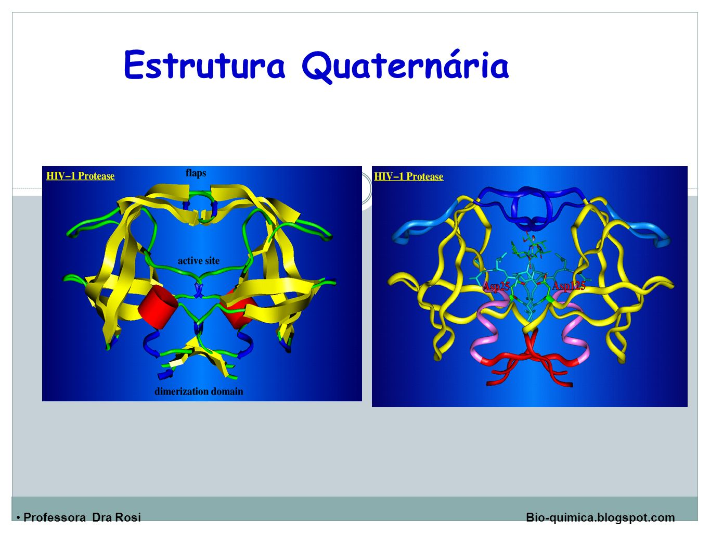Professora Dra Rosi Bio-quimica.blogspot.com Estrutura Quaternária