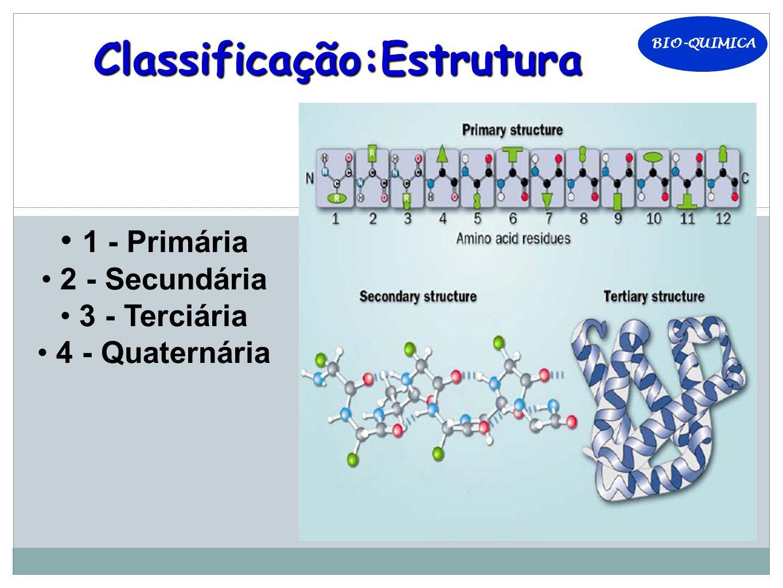 BIO-QUIMICA Classificação:Estrutura 1 - Primária 2 - Secundária 3 - Terciária 4 - Quaternária