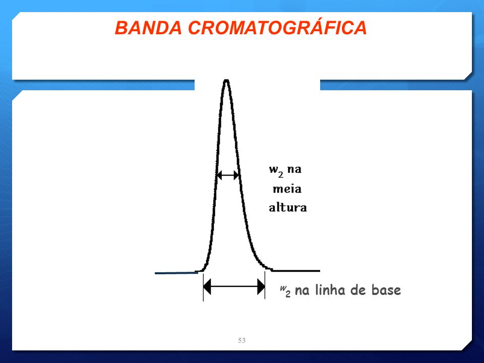 w 2 na linha de base BANDA CROMATOGRÁFICA 53