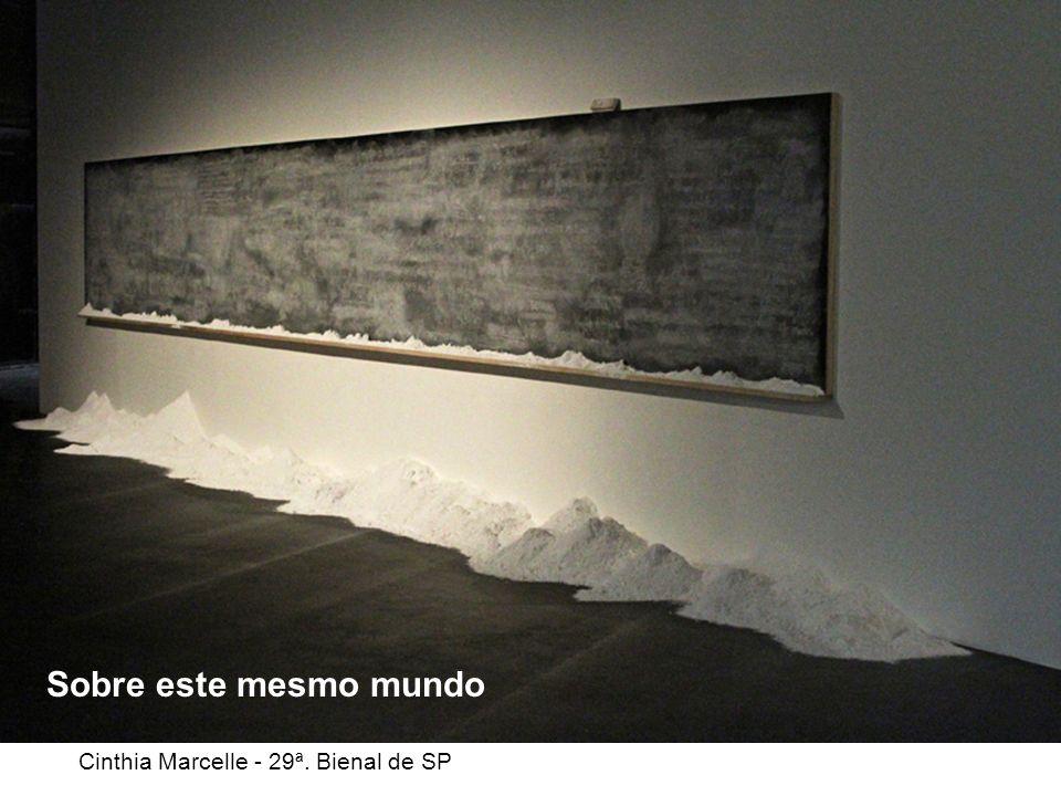 Sobre este mesmo mundo Cinthia Marcelle - 29ª. Bienal de SP