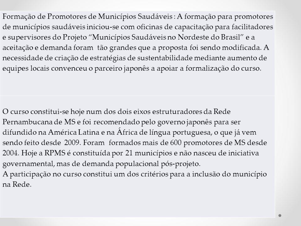 Formação de Promotores de Municípios Saudáveis : A formação para promotores de municípios saudáveis iniciou-se com oficinas de capacitação para facili